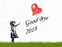 向 2018 say goodbye
